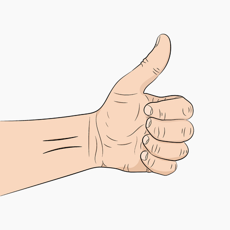Hand with the thumb lifted up. Vector illustration. Human hand giving ok.