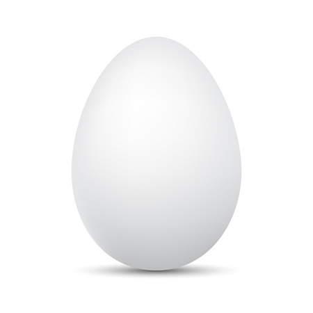 White Egg isolated. Vector illustration. Chicken Egg with shadow Illusztráció