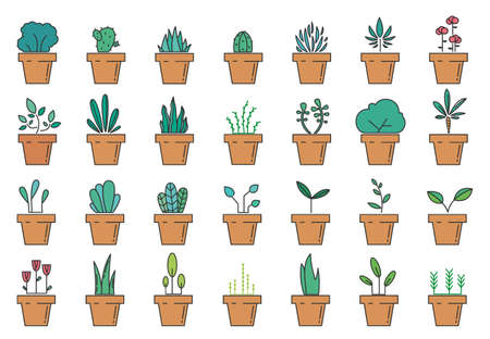 Flowerpot linear icons. Set of color floral plants in pots. Houseplant icons. Vector illustration