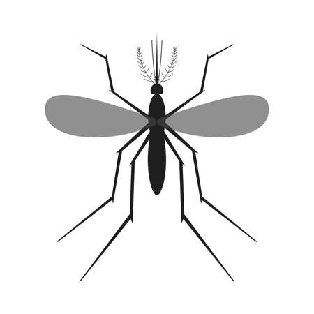 Mosquito icon isolated. Black silhouette of mosquito. Vector illustration. Mosquito insect in flat design