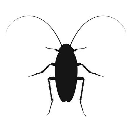 Cockroach vector  . Insect icon isolated. Black silhouette of cockroach. Vector illustration. Cockroach icon in flat design