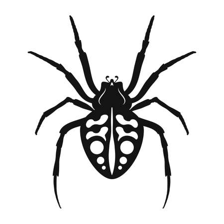 Spider vector icon. Black silhouette of spider. Insect icon isolated. Vector illustration. Spider   in flat style 版權商用圖片 - 155511094
