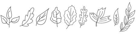 Set of Leaves in thin line style. Linear leaves icons. Outline leaves isolated. Vector illustration.