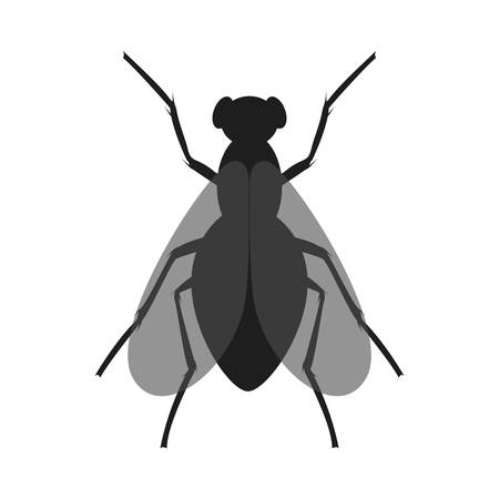 The fly icon. Black silhouette of housefly. Insect icon isolated. Vector illustration. Housefly   in flat style