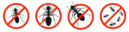 The ants with red ban sign. STOP ants sign isolated. Set of kill ants icons. Vector illustration. 版權商用圖片 - 156067012