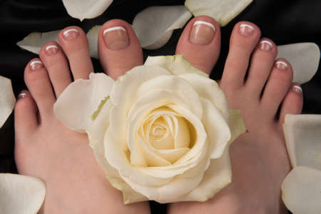 woman foot: Pedicure with a white rose
