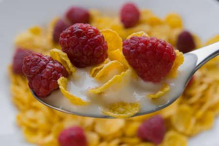 Fresh raspberries with corn flakes with diet yogurt