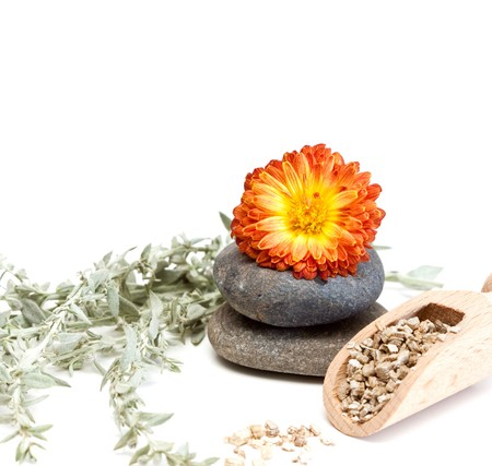 Flower and stones isolated on a white background. photo