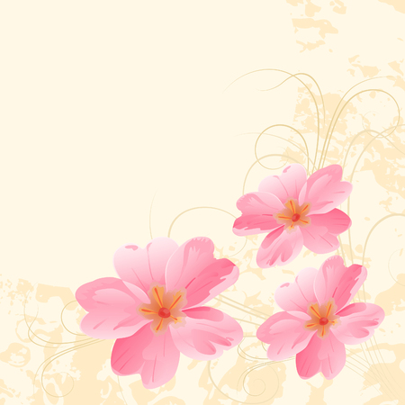 pink primroses on a yellow background.