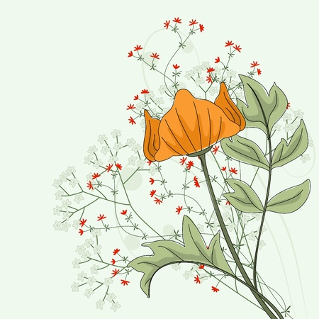 Hand drawn poppy with fantasy flowers and plants. Vector