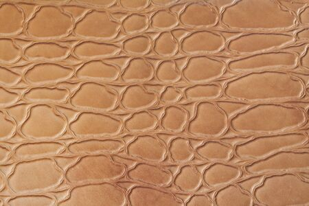 Abstract natural brown leather texture.  photo