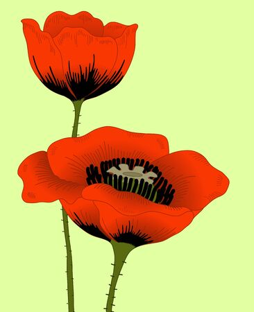 hand drawn fantasy poppies on yellow. Vector