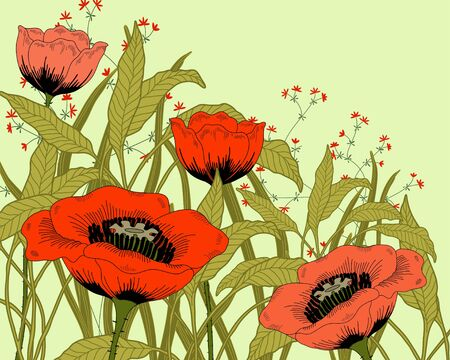 poppy field: hand drawn fantasy poppies and leaves.