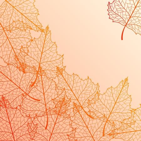 Wektor jesień z brzozy kolorowych liści.