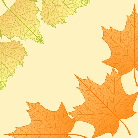 Vector autumn background with maple and birch leaves. Vector