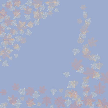 birch leaf: Vector autumn background with maple and birch leaves.