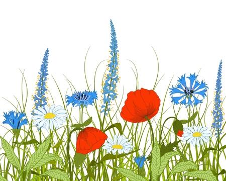 poppy field: campo con flores de fantas�a y la hierba. Vectores