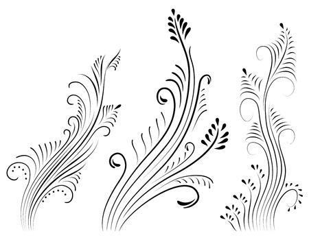 set of vintage color floral designs. Vector