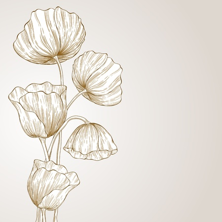 flower sketch: Vector template frame design with poppies for greeting card.