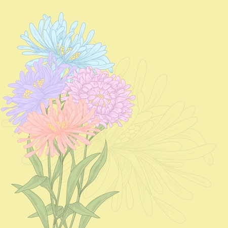 asters: Vector design with asters for greeting card.