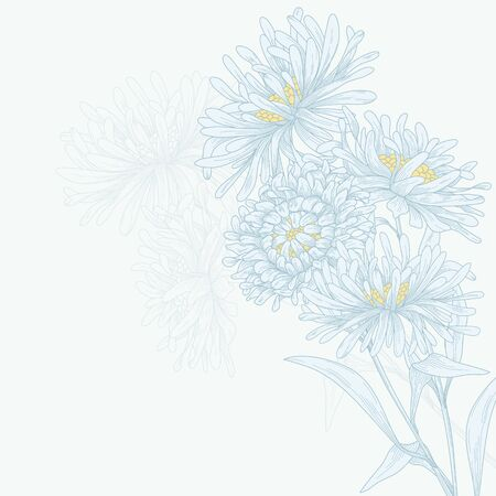 blue daisy: Vector design with asters for greeting card.