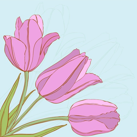 blue tulip: Vector design with tulips for greeting card.