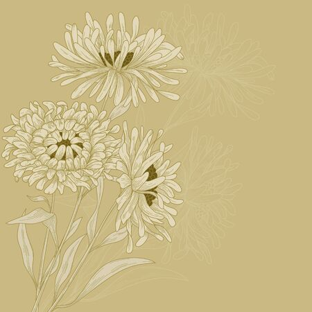 Vector design with asters for greeting card. Vector