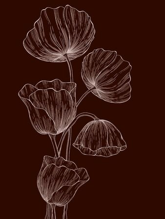 Vector template frame design with poppies for greeting card.