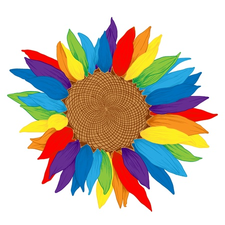 rainbow print: Vector colored sunflower with rainbows petals on white.