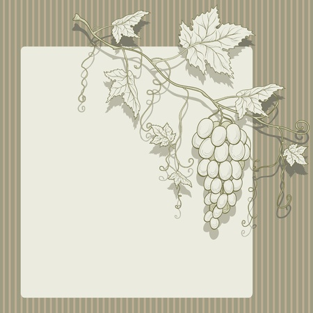 Vector grapes with leaves on a striped background and place for text.  Illustration
