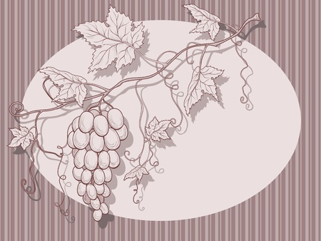 Vector grapes with leaves on a striped background and place for text.