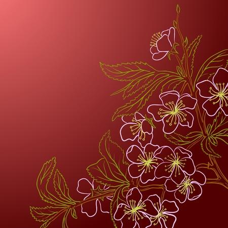 red and yellow card: Ilustraci�n vectorial con la flor del cerezo para la tarjeta de felicitaci�n.