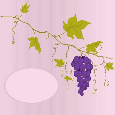grapes with leaves on a striped background and place for text. Stock Vector - 13196949