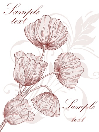 template frame design with poppies for greeting card. Illustration