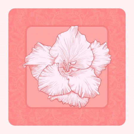 arabesque antique: illustration with ornament for greeting card with gladiolus.