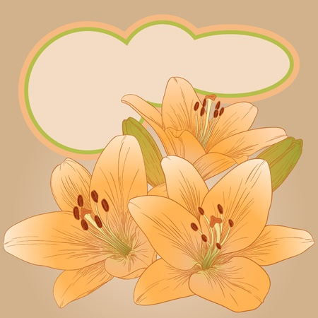 Vector illustration for greeting card with lilies. Stock Vector - 14416546