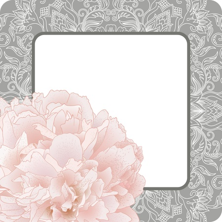 Vector illustration greeting card with pattern and peony