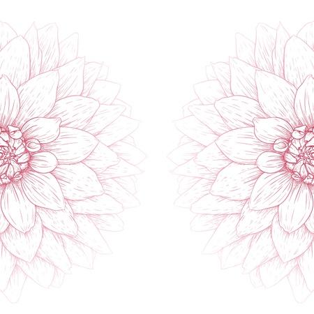 달리아: 벡터 달리아 꽃 흰색 배경에 고립입니다.