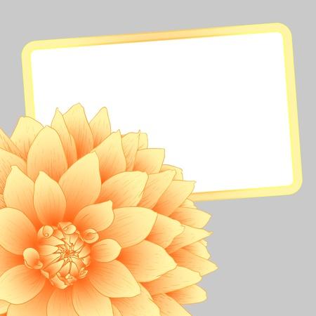 illustration greeting card with orange dahlia. Stock Vector - 16216933