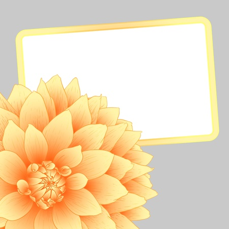 illustration greeting card with orange dahlia. Vector