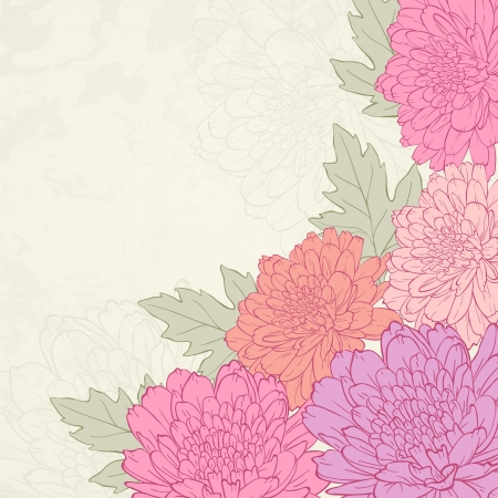 Vector illustration for greeting card with chrysanthemum. Vector