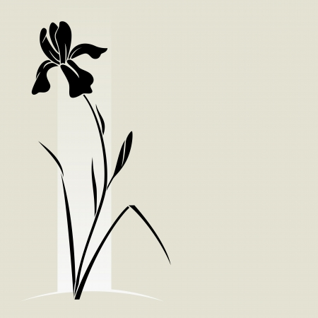iris: Vector illustration with iris for greeting card