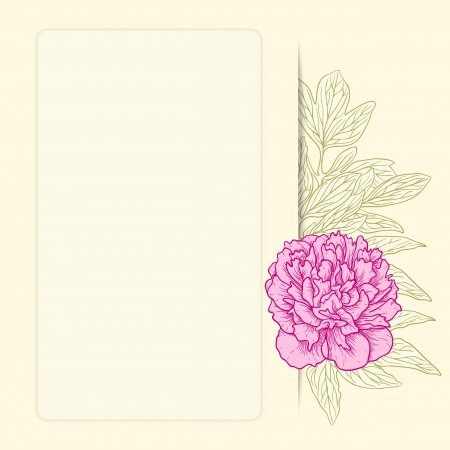 Vector illustration for greeting card with peonies.