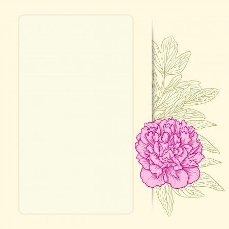 pfingstrosen: Vektor-Illustration für Grußkarte mit Pfingstrosen.