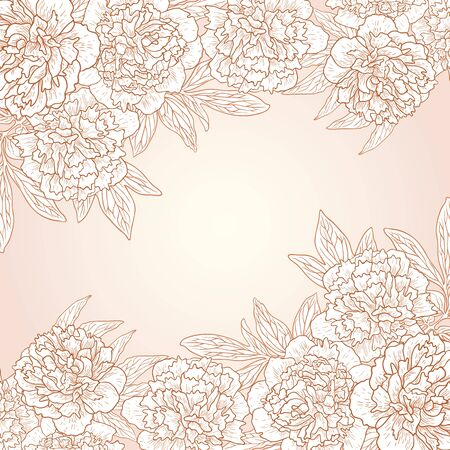 peonies: Vector illustration for greeting card with peonies.