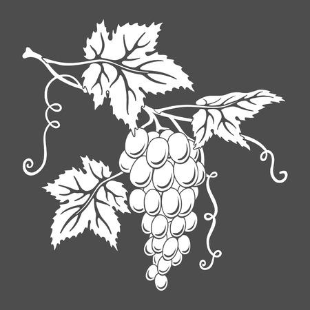 Vector silhouet van druiven met bladeren op grijs. Stock Illustratie