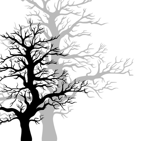 winter tree: Vector trees silhouettes isolated on white background.