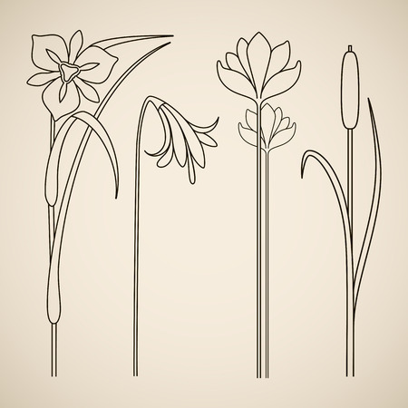 Vector art nouveau floral elements for print and design. Illustration