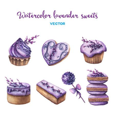 Vector watercolor lavender sweets set. Design elements. Illustration