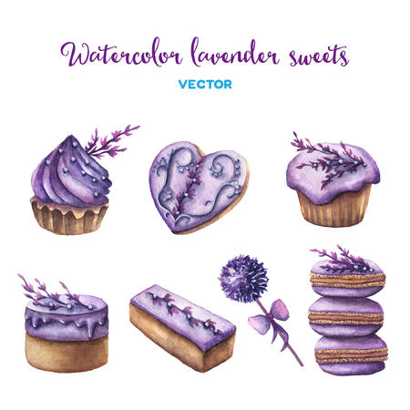 macaroon: Vector watercolor lavender sweets set. Design elements. Illustration